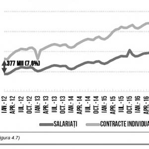 Figura 6. Diferența dintre numărul de contracte de muncă și numărul de salariați, Syndex – 2019
